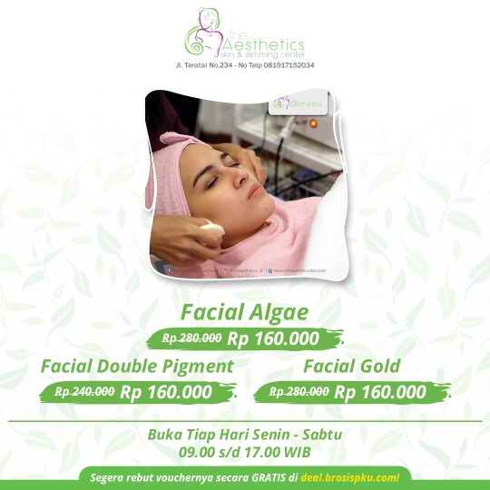 The Aesthetics Facial Deal
