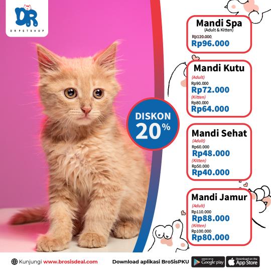 Dr Petshop Kucing Mandi Deal